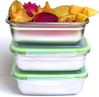 JaceBox Xlarge 3 Food Containers Set All Same Size 1800ml/ 90oz Perfect for Salads Sandwiches Pot Luck Family picnic trave...