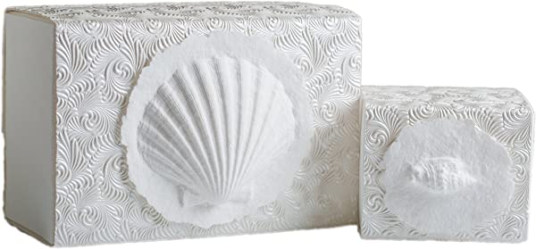 The Favorite Place Burial Urn Box Small Shell Box Biodegradable For Ground Burial Scattering Cremated Ashes In Earth Friendly Eco Urn Small Metallic White Swirl
