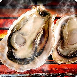 牡蠣 カキ 冷凍殻付 Lサイズ 3kg 26個個前後 4~5人前 海鮮 バーベキュー BBQ カンカン焼き追加用として人気 カンカンは付いてません 広島県産