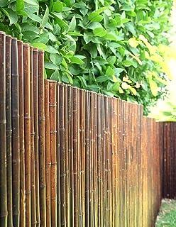Robusto Bambú Madera Visibilidad Protección Valla nigra de de-commerce I de Alta Calidad Paravientos terraza, balcón, jardín I Tubo de Bambú Valla con geschlossenen Tubos 100 cm x 250cm