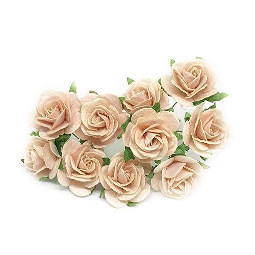 Flowers Paper Craft Amazon Com