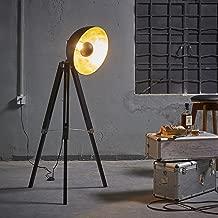 Best tripod studio floor lamp Reviews