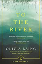 To the River: A Journey Beneath the Surface (Canons Book 71) (English Edition)
