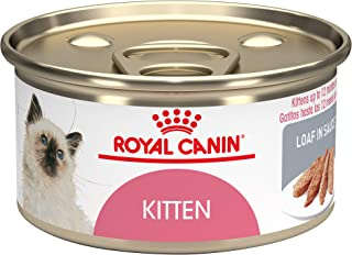Royal Canin Feline Health Nutrition Loaf in Sauce Wet Kitten Food