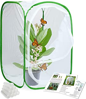 RESTCLOUD Insect and Butterfly Habitat Cage Terrarium Pop-up 24 Inches Tall with 10Pcs 10ML Floral Tubes