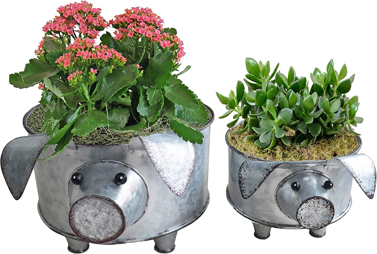 Jacksonville Mall ShabbyDecor Galvanized Pig Standing Bowl Container for Max 63% OFF or Fruit