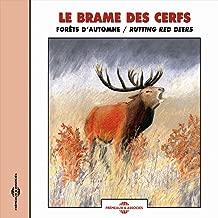 Le brame des cerfs (Forêts d'automne / Rutting Red Deers)