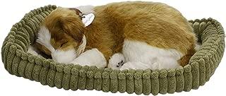 Perfect Petzzz Collie Soft Toy