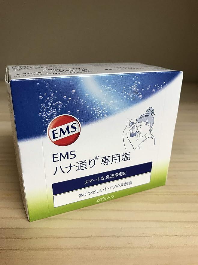 量ガラス道徳EMSハナ通り 専用塩 20包