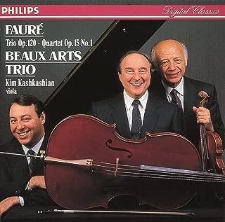 Piano Trio In D Minor, Op.120 - 1. Allegro, Ma Non Troppo