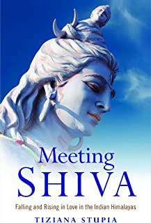Meeting Shiva (English Edition)