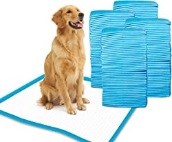 Dog Pee Pads and Puppy Training Potty Pads by Gardner Pet - 50 Count 100 Count Box - 24  x 24  L - Quick Drying Surface - Super-absorbent Core
