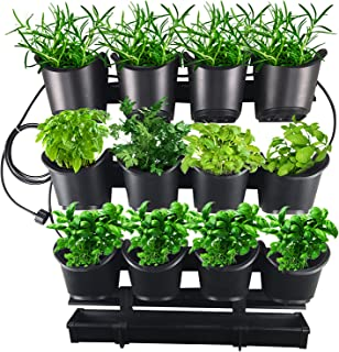 Best grow your own urban garden Reviews