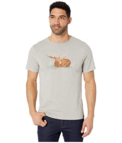 United By Blue Morning Dip Short Sleeve Graphic Tee (Grey) Men