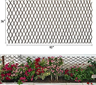 Expandable Garden Trellis Plant Support Willow Lattice Fence Panel for Climbing Plants Vine Ivy Rose Cucumbers Clematis 36...