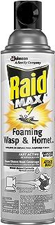 Raid Max Foaming Wasp & Hornet Killer, 13 OZ (Pack - 1)