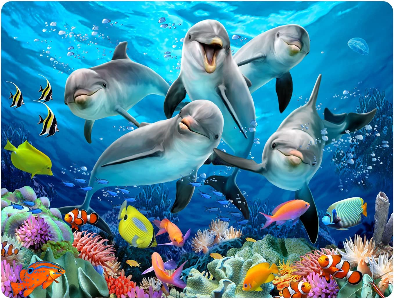 Howard Large-scale 70% OFF Outlet sale Robinson Super 3D Dolphin Postcard Delight Moving