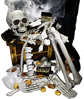 JOYIN Box of Skeleton Bones and Skull for Halloween Decorations Including 28 PCs Halloween Bones 100 Pirate Coins and Spider Webs