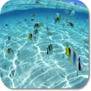 Under Water HD Wallpapers
