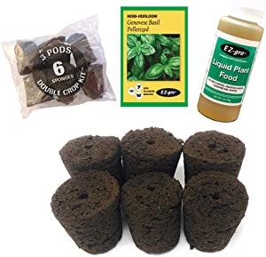 Hydrohort Genovese Basil Seed Pod Kit is Compatible with Click and Grow Smart Garden | Double The Sponges & Double The Seed for 2 Crops | Pelletized Seed for EZ Planting
