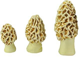 Best morel mushroom statues Reviews