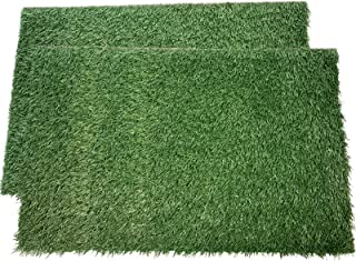 LOOBANI Dog Grass Pee Pads, Artificial Turf Pet Grass Mat Replacement for Puppy Potty Trainer Indoor/Outdoor Use - Set of 2
