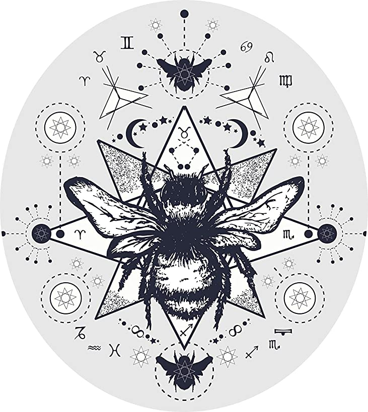 Morgan Graphics Cool Constellations Astrology Bumble Bee Cartoon Icon (4