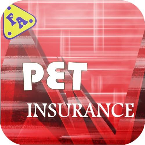 Best Pet Insurance In Usa