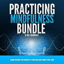 Practicing Mindfulness Bundle: 5 in 1 Bundle, Mindfulness, Transcendental Meditation, Zen Mind, Feng Shui, Yoga for Beginners