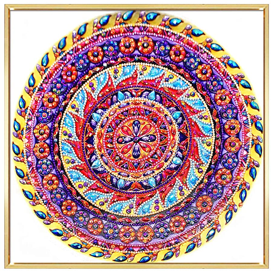 HuaCan Diamond Painting Kits for Adults DIY 5D Special Shape Partial Drill Crystal Rhinestone Embroidery Pictures Arts Craft for Home Wall Decor Printed Frame 30x30cm/11.8x11.8in