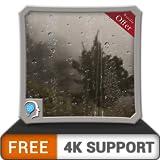 無料の霧の雨の森HD-HDR 4K TV、8K TV、火のデバイスでロマンチックな雨の景色を壁紙、クリスマス休暇の装飾、調停と平和のテーマとして感じてください