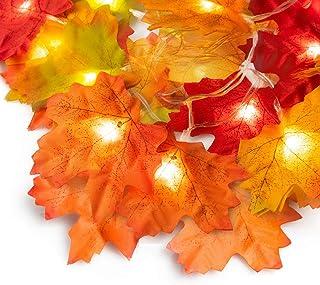 Ponwec Fall Room Decor Maple Leaf Light, Unique 5 Vivid Colors Fall Leaf Garland with 20..