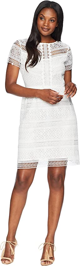 Tahari by ASL Short Sleeve Chemical Lace Fit and Flare Dress