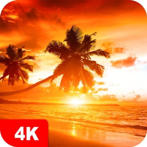 Sunset Wallpapers 4K & HD Sunrise Backgrounds apps