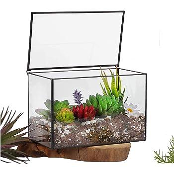 "Ferrisland Glass Terrarium Mordern Rectangle Geometric Succulent Terrarium for Tabletop Decor Box w/Lid-8.3""x5.5""x4.7"""