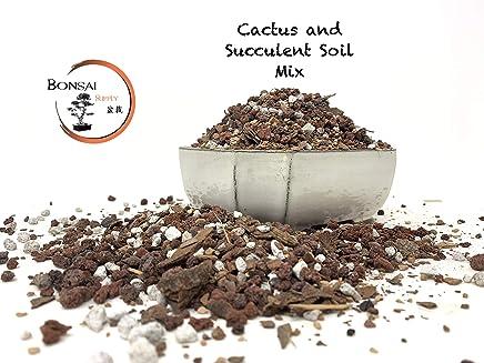 Succulent & Cactus Soil Mix - Premium Pre-Mixed Fast Draining Blend (2.5 Quart Bag) Pumice, Lava, Calcined Clay and Pine Bark