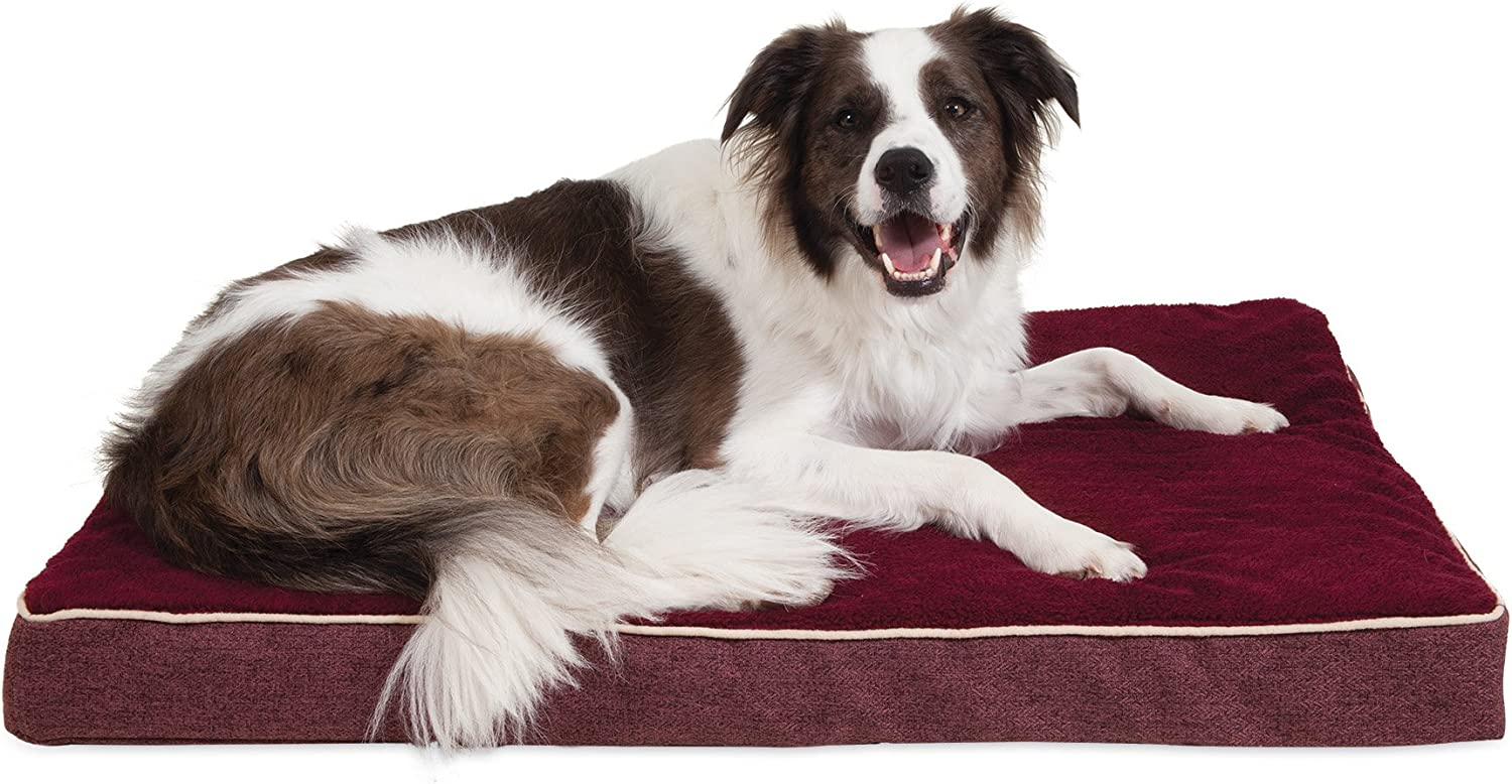 Aspen Pet 80803 Burgundy 28  X 38  X 3.5  Orthopedic Pet Bed