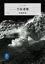 表紙: ヤマケイ文庫 ドキュメント雪崩遭難   阿部 幹雄