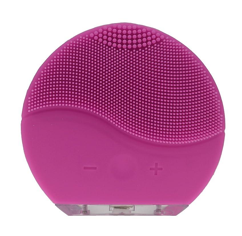 人口電気的ふつうダンマ防水シリコーン電気洗顔ブラシブラシマッサージャーUSB充電&充電式(ピンク)