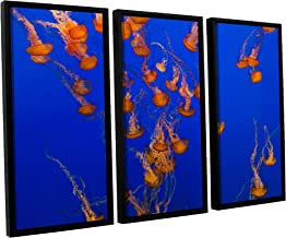 Scott Campbell's Flowing Pacific Sea Nettles 2, 3 Piece Floater Framed canvas Set 24x36
