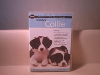 Border Collie - Owners Guide