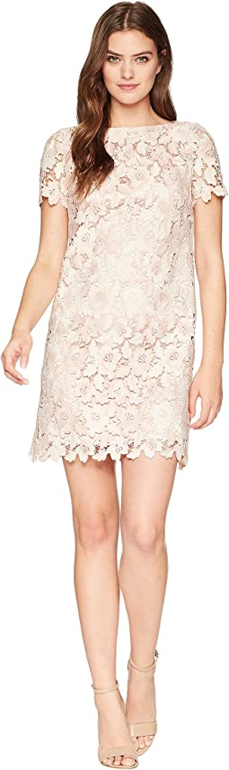 Tahari by ASL Lace Shift Dress