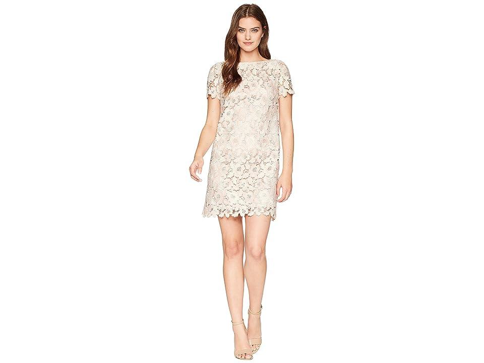 Tahari by ASL Lace Shift Dress (Ivory/Blush) Women