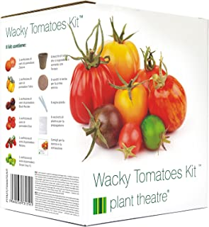 Légumes-tomate-gigantomo 5 graines-économie