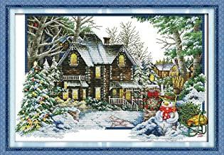 Full Range of Embroidery Starter Kits Stamped Cross Stitch Kits Beginners for DIY Embroidery (Multiple Pattern Designs)-The Winter House