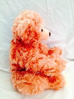 Best rose bear germany Reviews