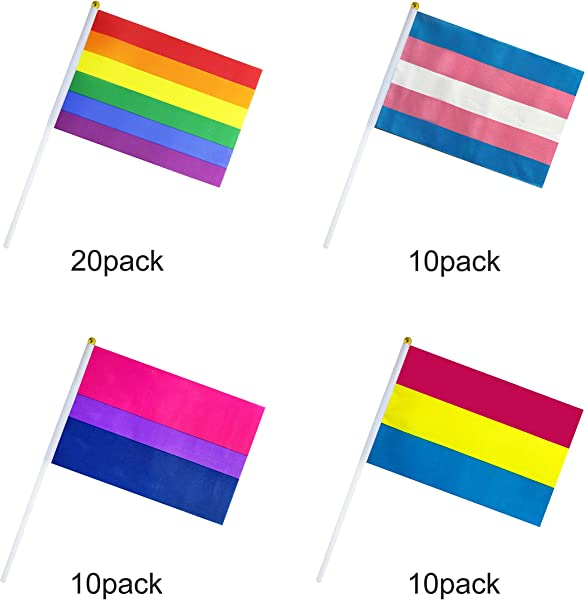 50 Pack Rainbow Gay Pride Flag Small Mini Transgender Trans Bisexual Bi Pansexual Pan Stick Flags LGBT Party Decorations