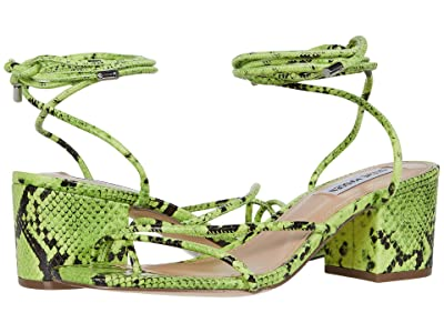 Steve Madden Impressed (Green Snake) Women
