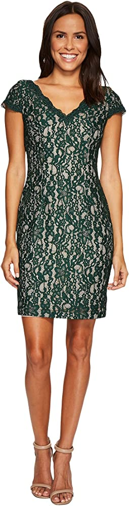 Adrianna Papell, Dresses, Women | Shipped Free at Zappos