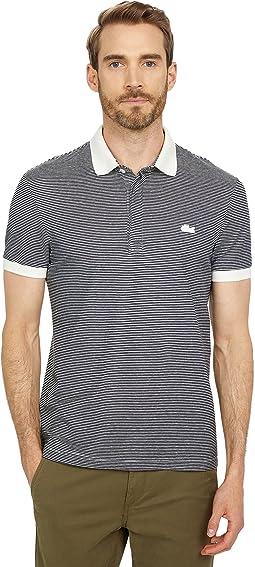 Short Sleeve Pinstriped Polo